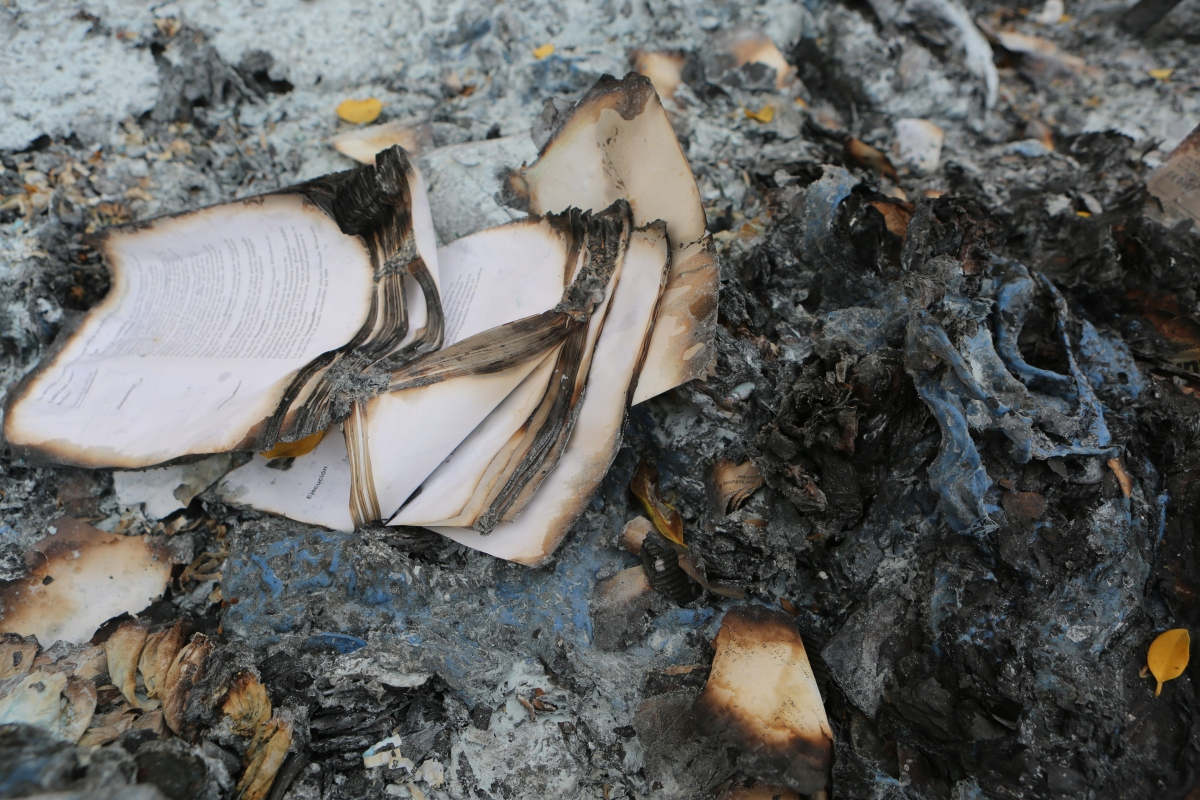When Books Burn